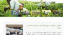 Tradecorp lanza nuevos websites locales en Australia, Polonia, Italia y MENA (árabe)