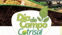 Generando conocimiento y superando desafíos: Tradecorp participa en el Día del Campo Cotrisal (Brasil)